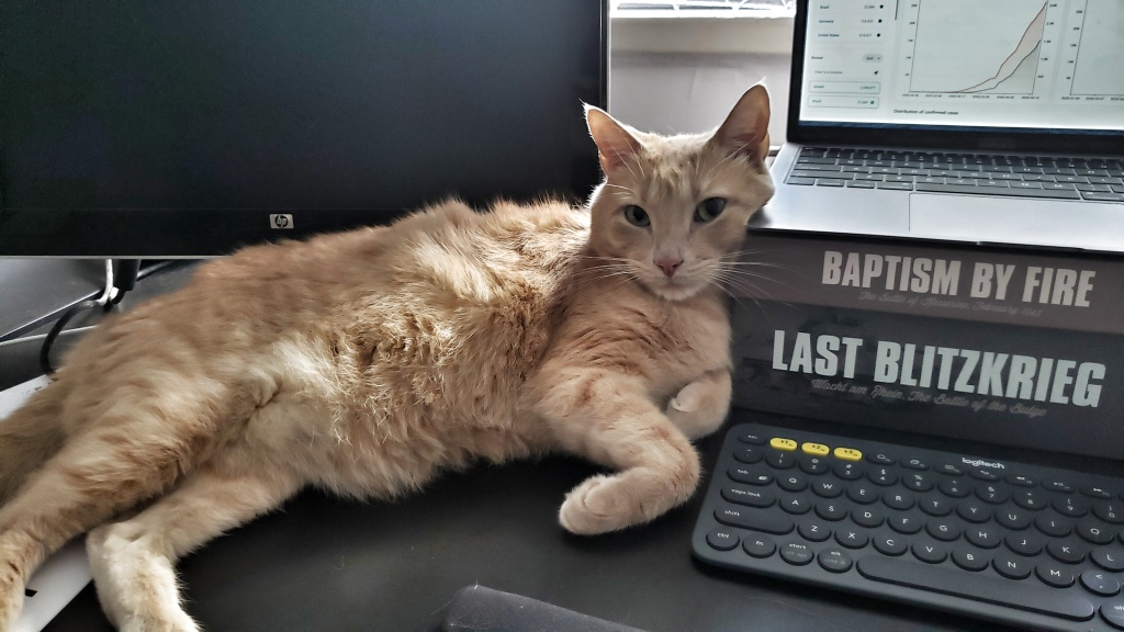 Cats, wargames, and exponential curves